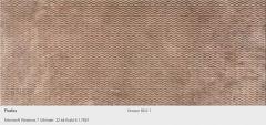 CLERO Waves 20x50